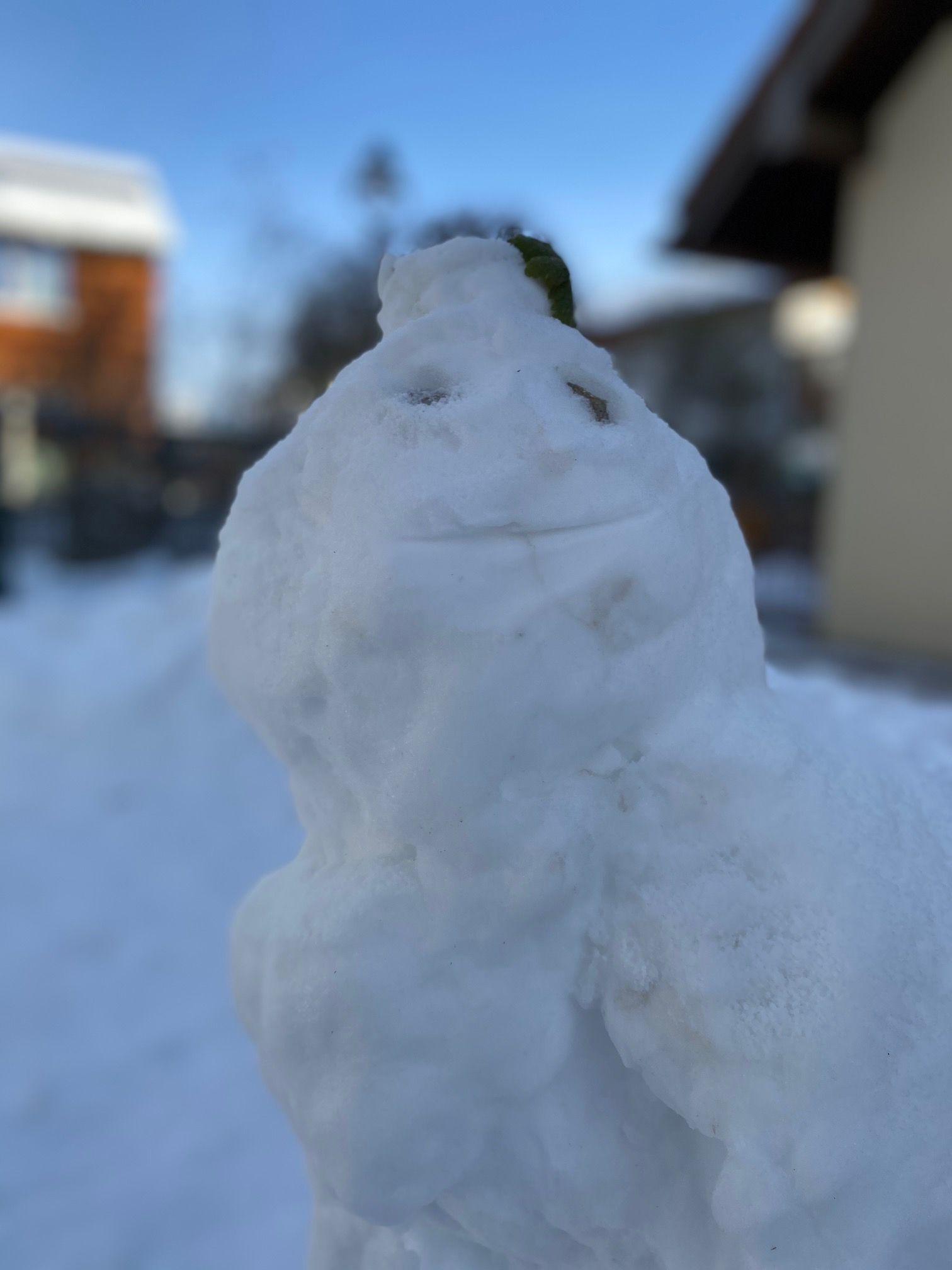 Schneemann die Arche